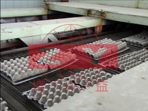 鸡蛋蛋托造纸设备案例